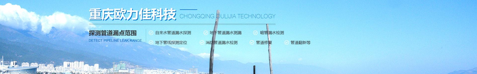 重庆水管漏水检测公司